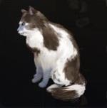 http://uploader.swiki.jp/attachment/full/attachment_hash/5a0f0181ddb308cf05809a338a9ffd278a5ec640