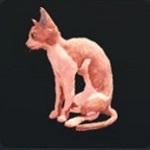 http://uploader.swiki.jp/attachment/full/attachment_hash/5bd3971d7191e792adef8eeab88da4d54839b1fe