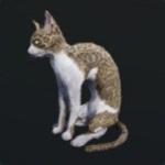 http://uploader.swiki.jp/attachment/full/attachment_hash/8ed37c97499e2b4100bba0bef980704bc86fe763