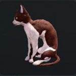 http://uploader.swiki.jp/attachment/full/attachment_hash/b3a0f2c1ece71bdb41ab3717687bbc74020e6e93