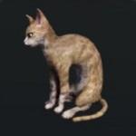 http://uploader.swiki.jp/attachment/full/attachment_hash/bb2560023d622aa9402f498adfd809290c505d6d
