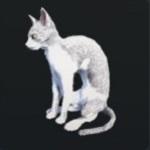 http://uploader.swiki.jp/attachment/full/attachment_hash/c0e3a61652316da63634643408027c2402a06b21